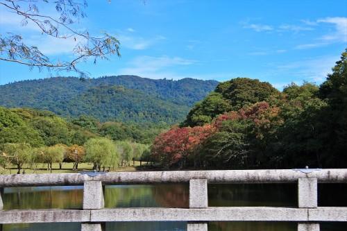 奈良 紅葉